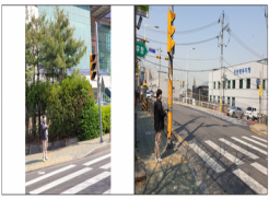 ◉ 학산초등학교 인근에 설치된 스마트음향신호기 현장점검 사진